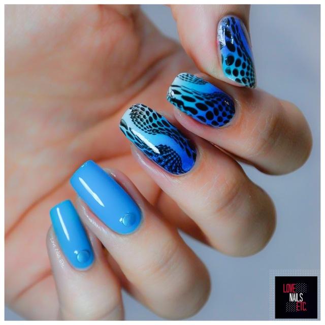 SM Black & Blue